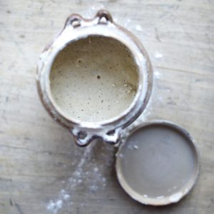 Sourdough starter & Levain fully explained