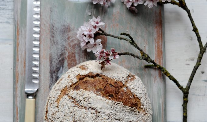 Sourdough in the spring