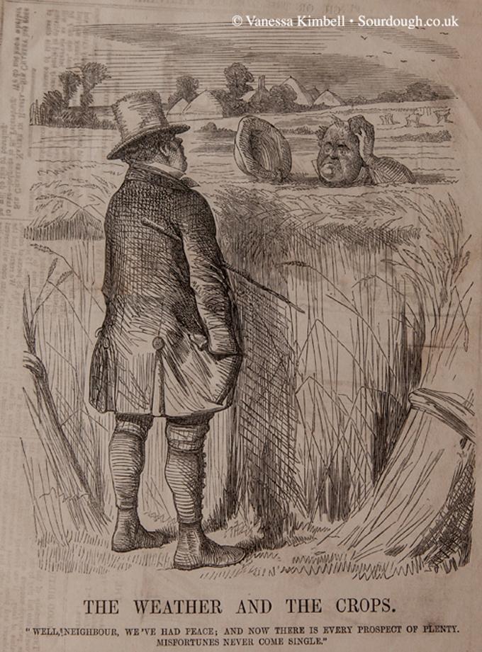 1865 – Wheat – UK