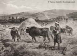 1875 – Fertile crescent – Syria