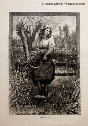 1883 – Miller's daughter – UK