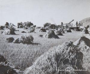 1942 – Wheat harvest – Canada