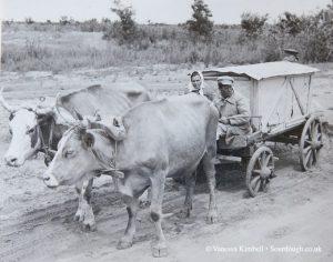 1948 – Transporting bread – Russia