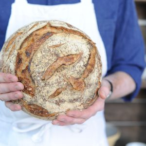 Classic White Sourdough Boule