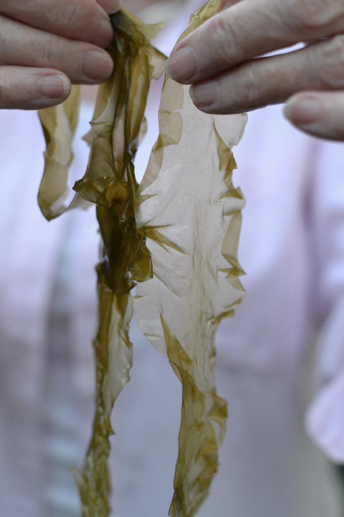 sourdough seaweed