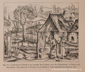 1517 – oats – barley – lyon