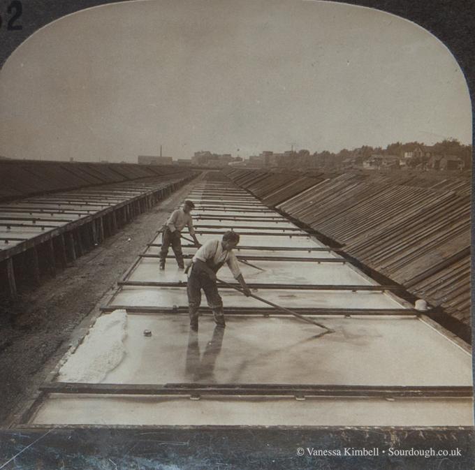 1900 – Salt – Syracuse, New York
