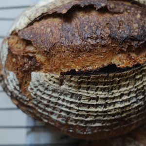 Sourdough Diploma 6 Day Workshop – July 2018