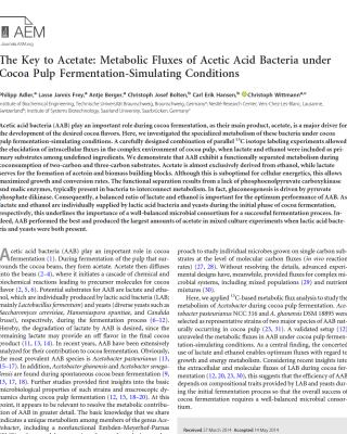 Acetic Acid Bacteria