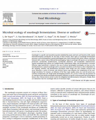 microbes in sourdough fermentations