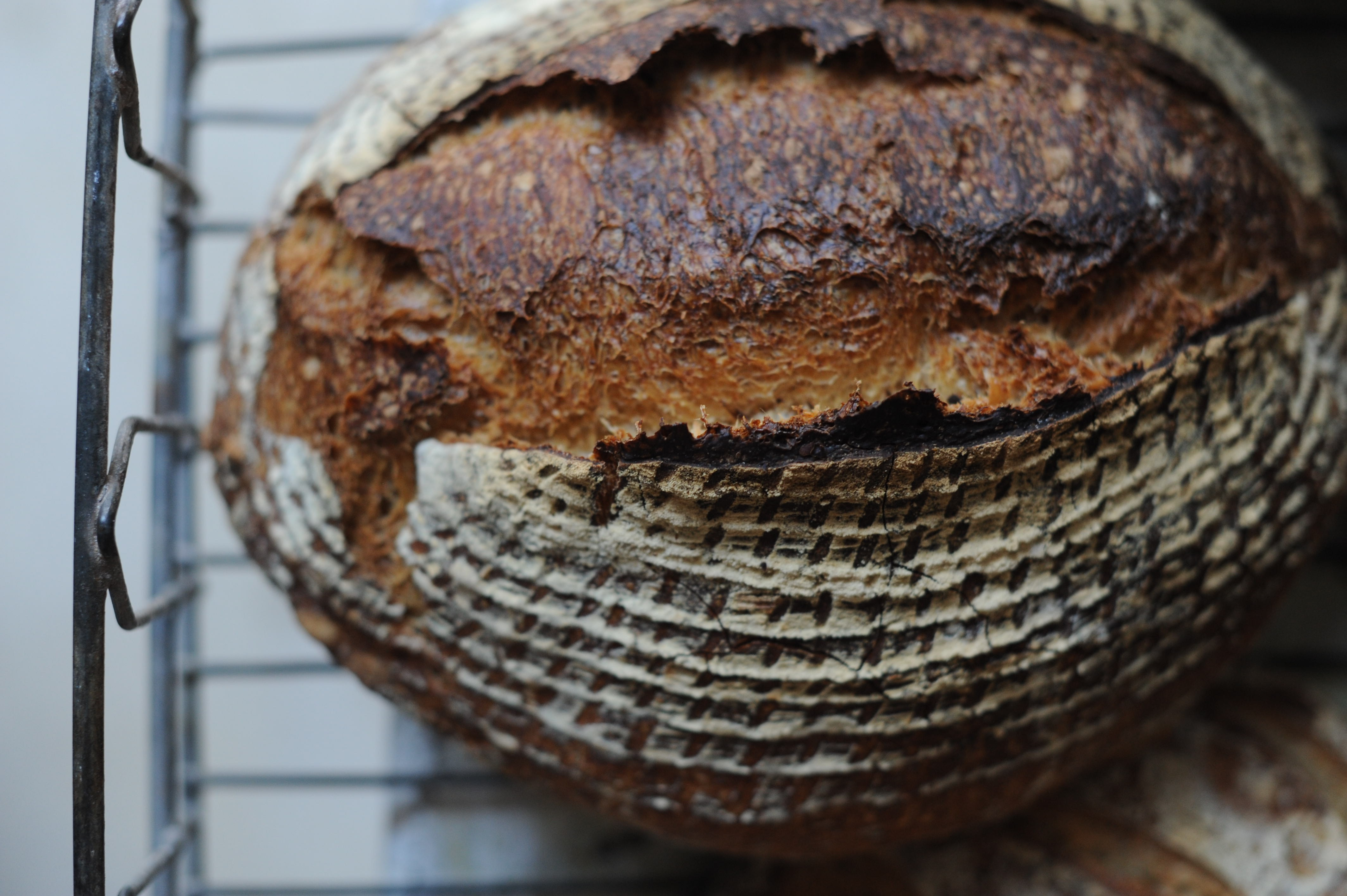 Sourdough bread making course - Ambient
