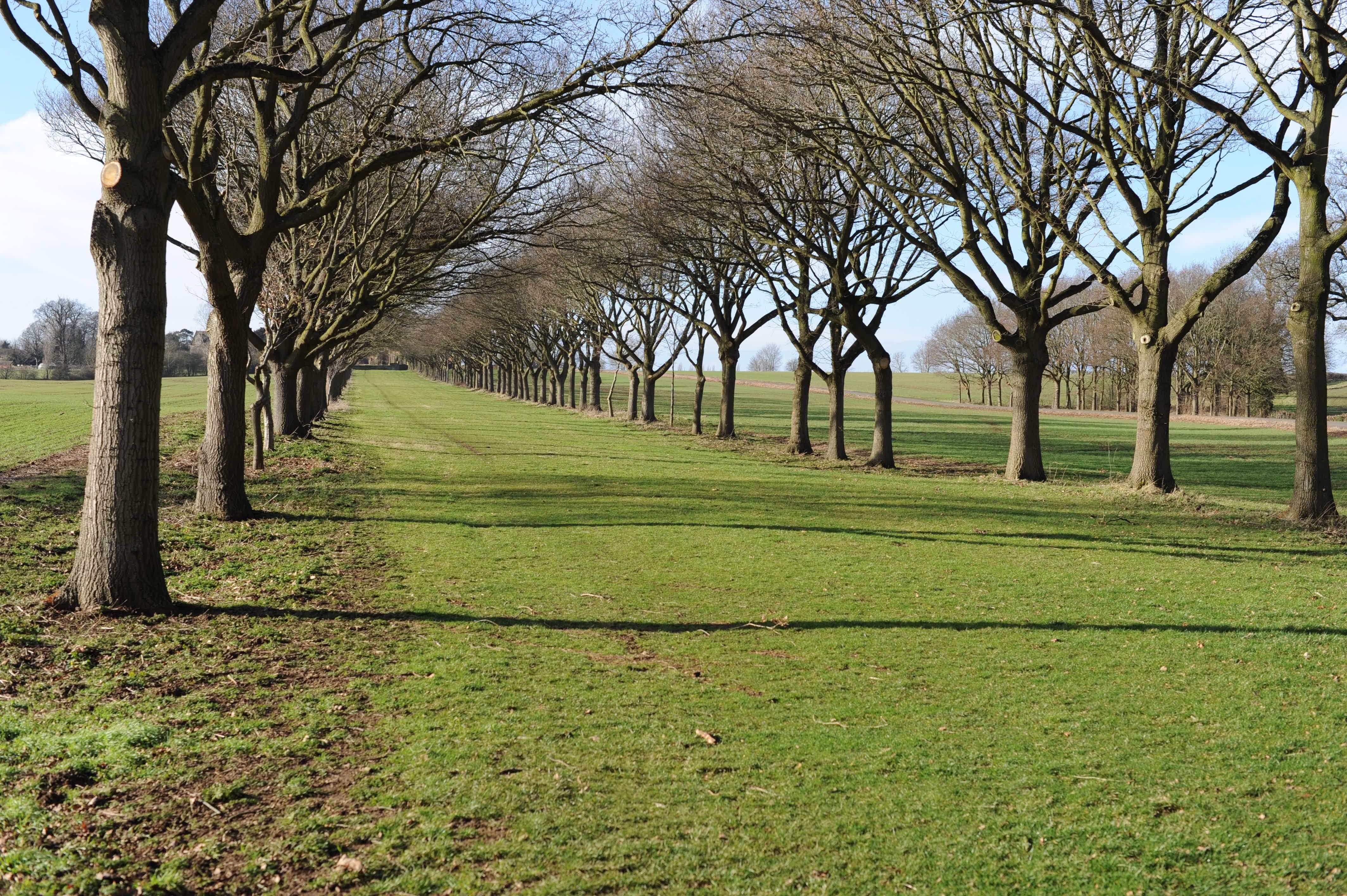 sourdough course walk