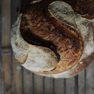 Sourdough for health – 2 Days
