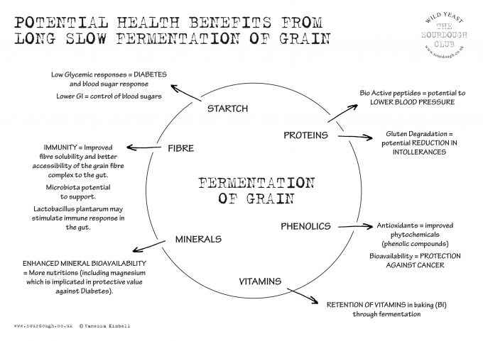 diagram of health benefits from long slow fermentation
